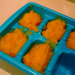 Making Baby Food for Twins