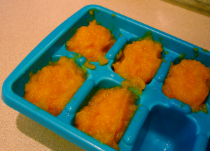 Making Your Own Baby Food For Twins