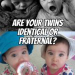 How do you know if your twins are fraternal or identical?
