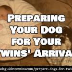 Preparing Your Dog for the Twins' Arrival