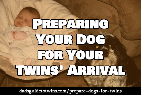 Prepare your dog for the twins