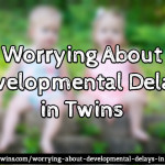 Worrying about Developmental Delays in Twins