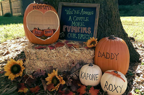 We're adding a couple more pumpkins to our patch