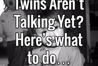 http://www.dadsguidetotwins.com/twins-not-talking/
