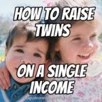 How to Raise Twins on a Single Income
