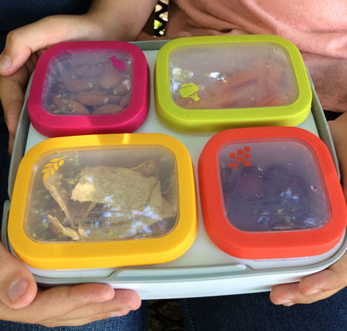 Rubbermaid Balance Meal Kit filled with food