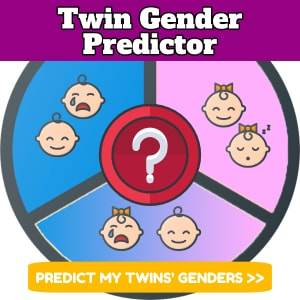 Twin Gender Predictor Calculator